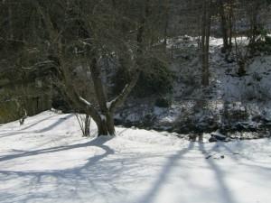 creeksnow2